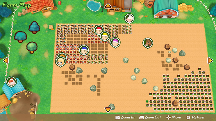 friends of mineral town farm map