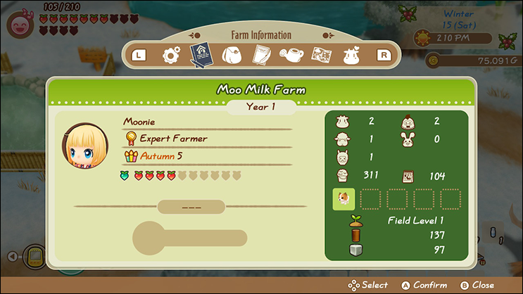 Power Berry Page Story of Seasons Friends of Mineral Town