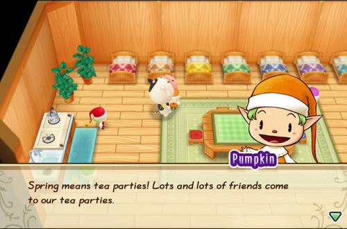 The Nature Sprite Tea Party In 'Friends of Mineral Town' 2